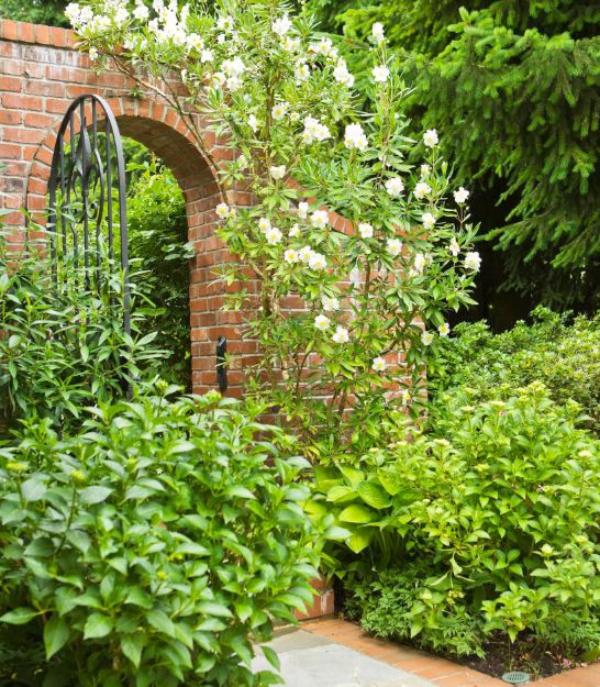 portillon de jardin métallique en forme d'arche
