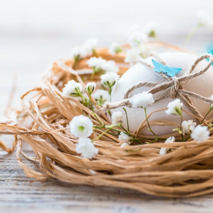 projet diy pour pâques nid de pâques
