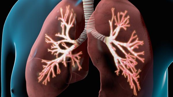 actualités coronavirus infection des poumons
