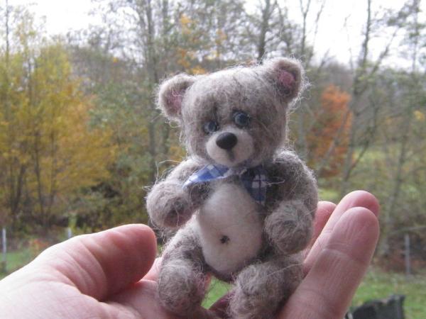 animal de compagnie insolite ourson au foulard
