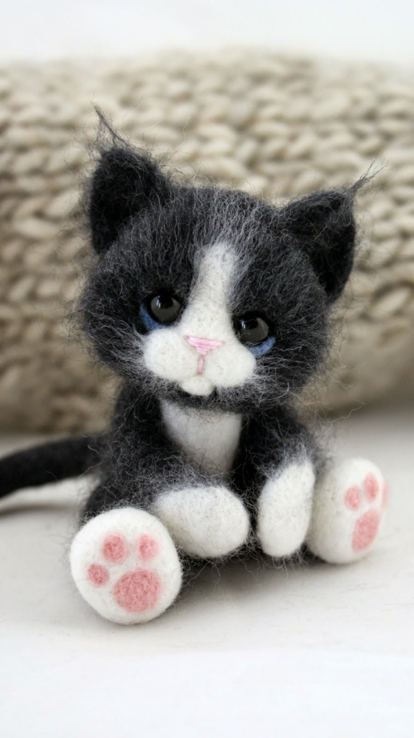 animal de compagnie insolite un chaton noir