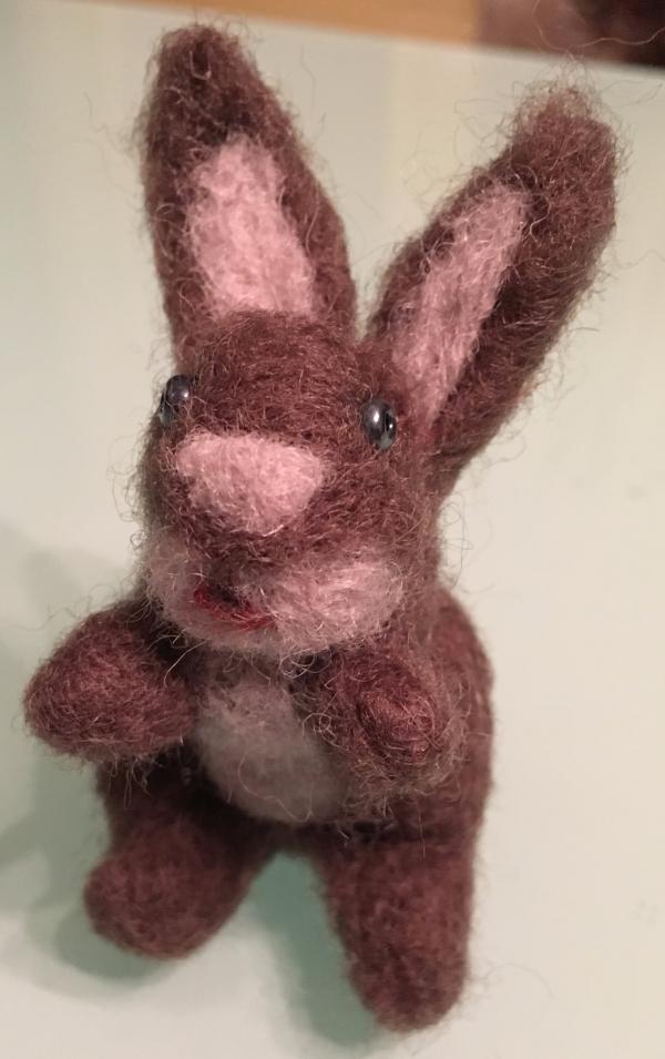 animal de compagnie insolite un lapin aux oreilles dressés