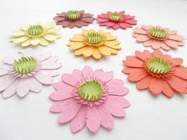 diy papier ensemencé fleurs