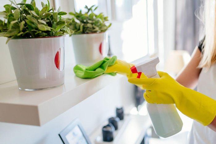 nnettoyage étagères vinaigre blanc désinfectant