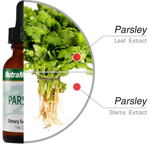 que faire avec du persil extrait des feuilles