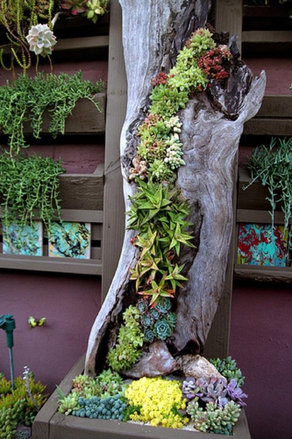 déco tronc d'arbre tronc fendu