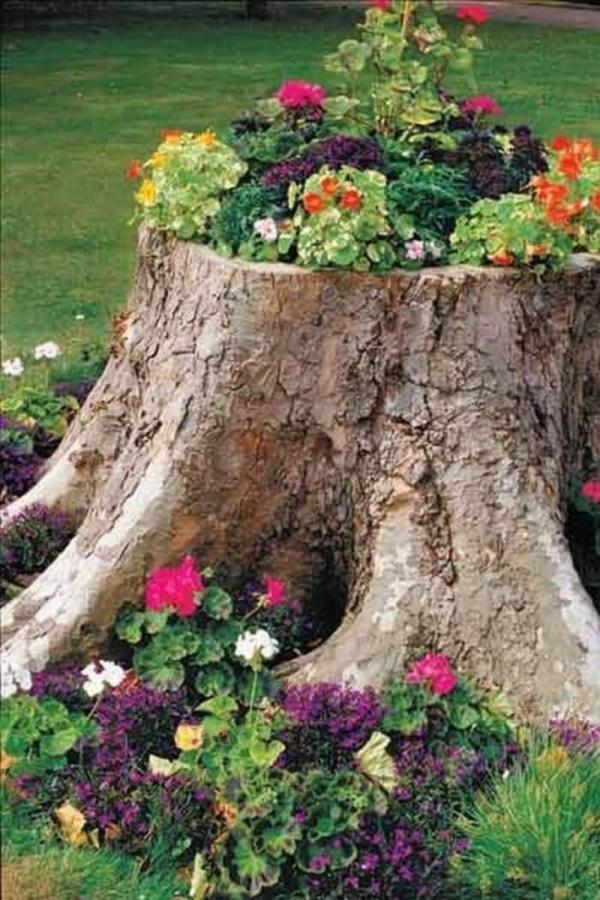 déco tronc d'arbre un pied gigantesque
