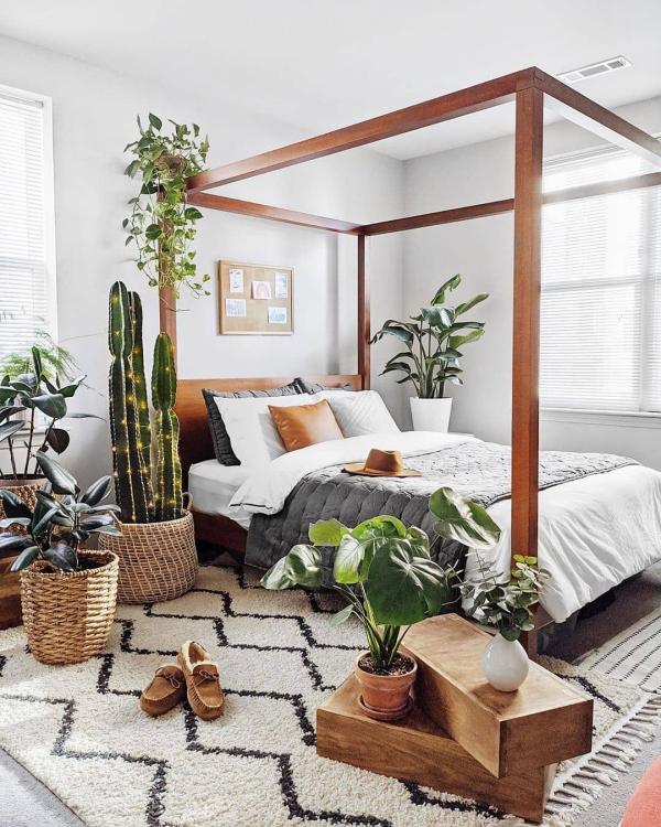 design d'intérieur plantes vivantes