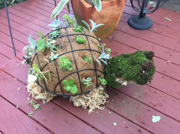 diy déco jardin jardinière originale tortue
