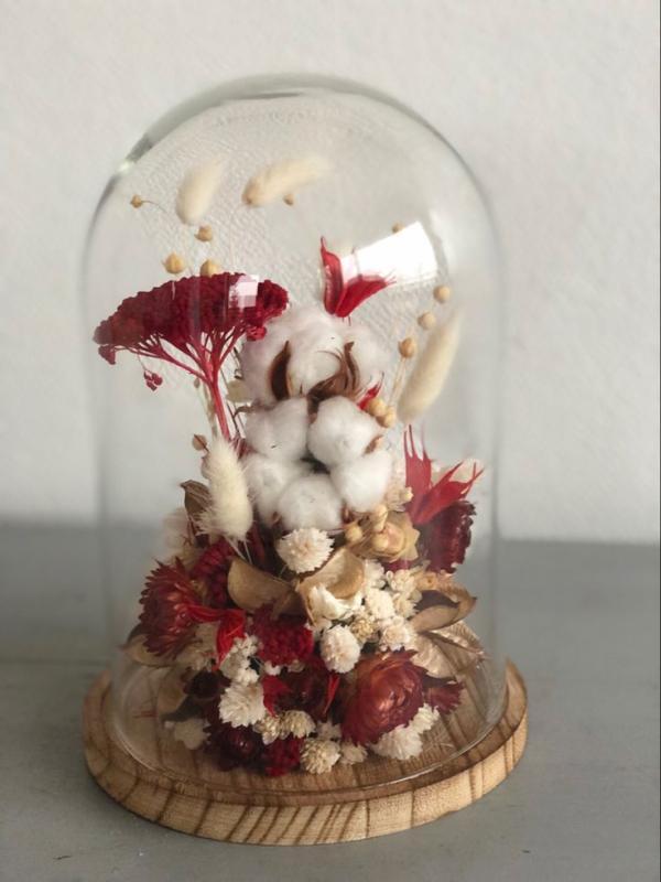 diy fleurs séchées sous cloche couleurs blanc et rouge