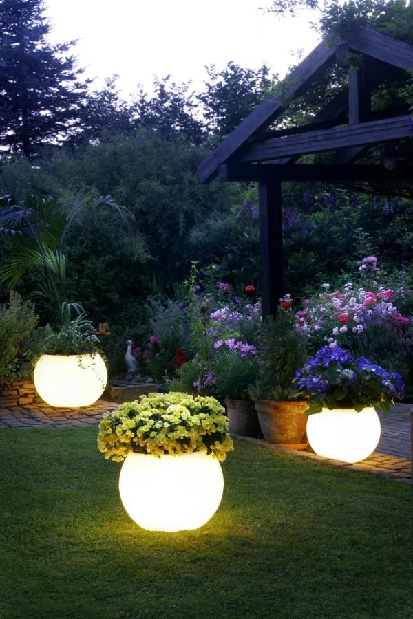 fleurs et plantes jardinières illuminées