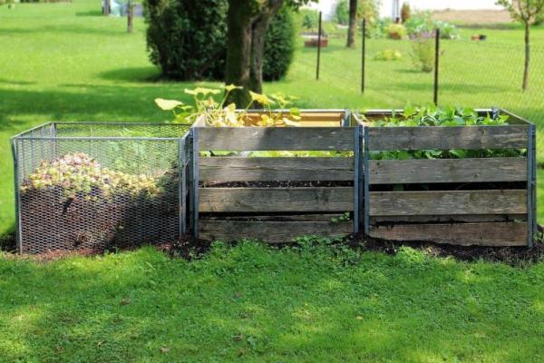 graminées vivaces du compost dans des coffres