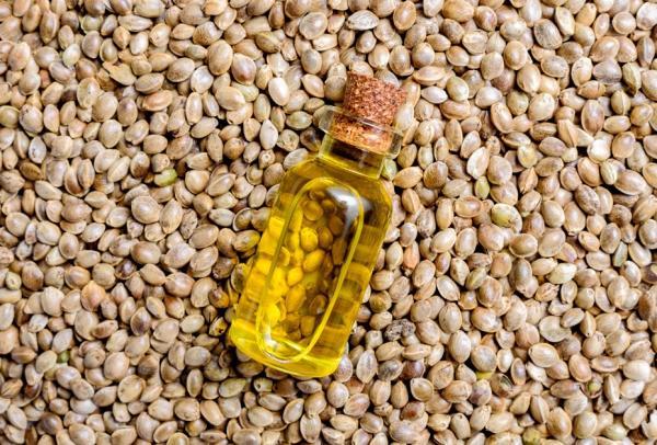 huile de cbd propriétés thérapeutiques