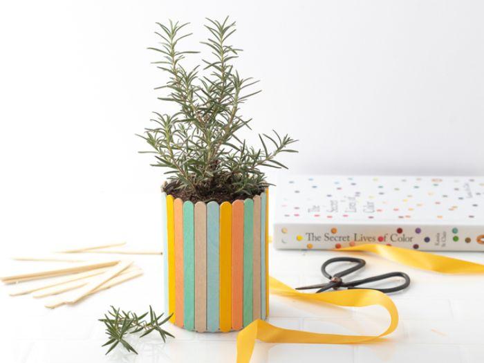 idée diy bâton de glace en bois pot de fleurs décoré