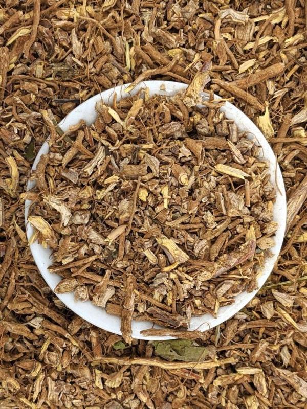 le vieillissement de la peau racines de l'herbe