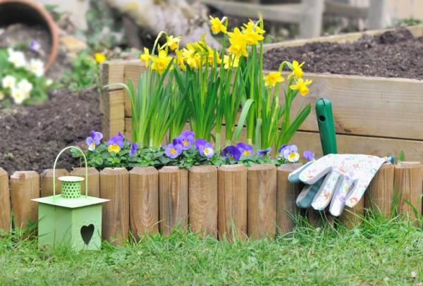 parterre de fleurs avec bordures à planter