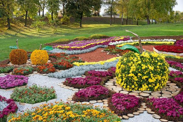 parterre de fleurs avec des formes complexes