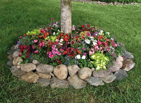 parterre de fleurs avec des pierres
