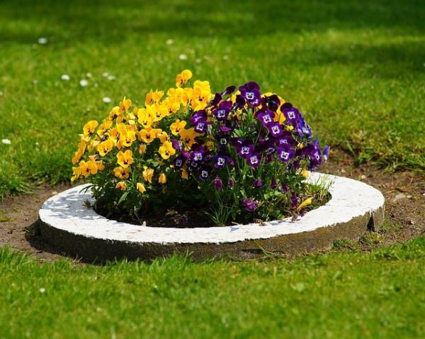 parterre de fleurs bordure en ciment