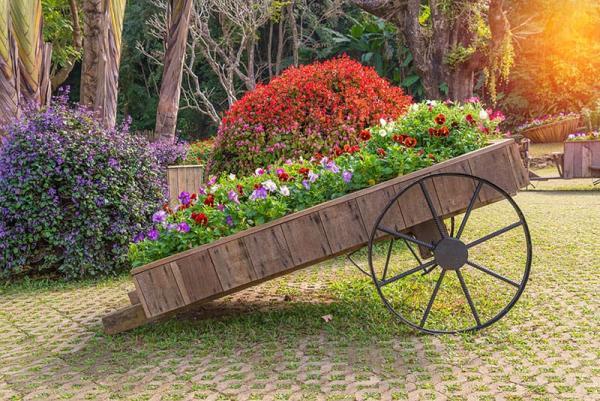 parterre de fleurs dans une charrette