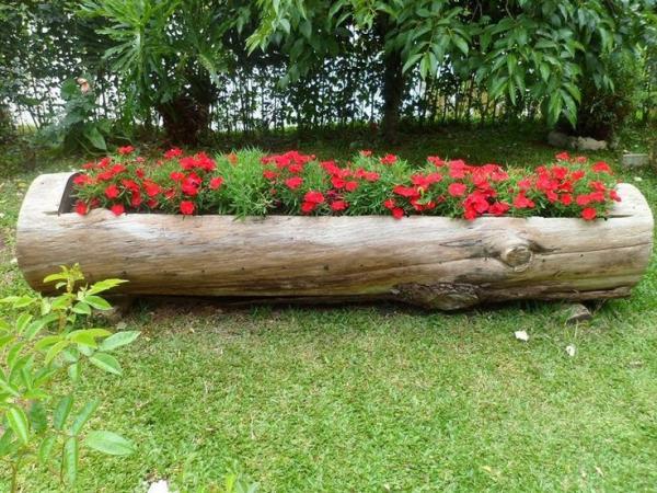 parterre de fleurs en tronc d'arbre