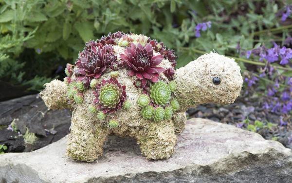 réaliser une jardinière originale tortue