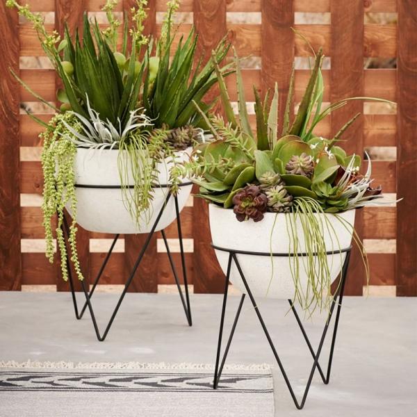 stand de fleurs à l'intérieur pour de grands pots