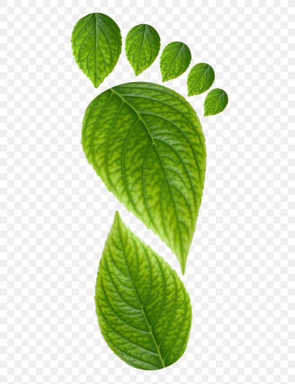 écotourisme définition logo du mouvement