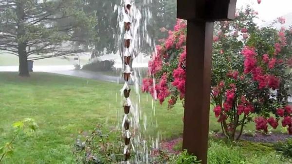 chaîne de pluie vers l'arbuste
