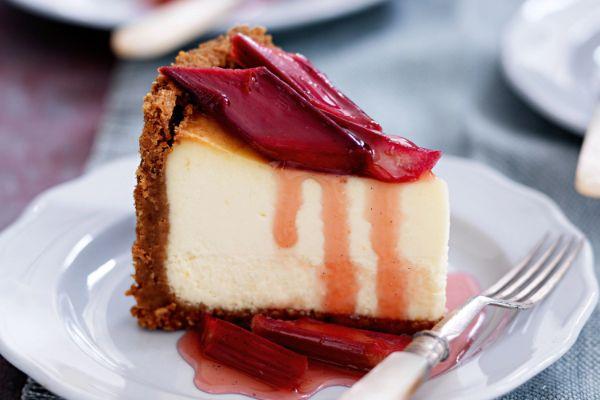 cheesecake à la rhubarbe conseils comment planter de la rhubarbe