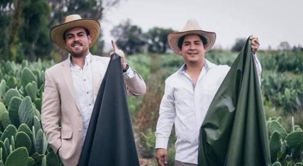 cuir artificiel de cactus deux entrepreneurs mexicains