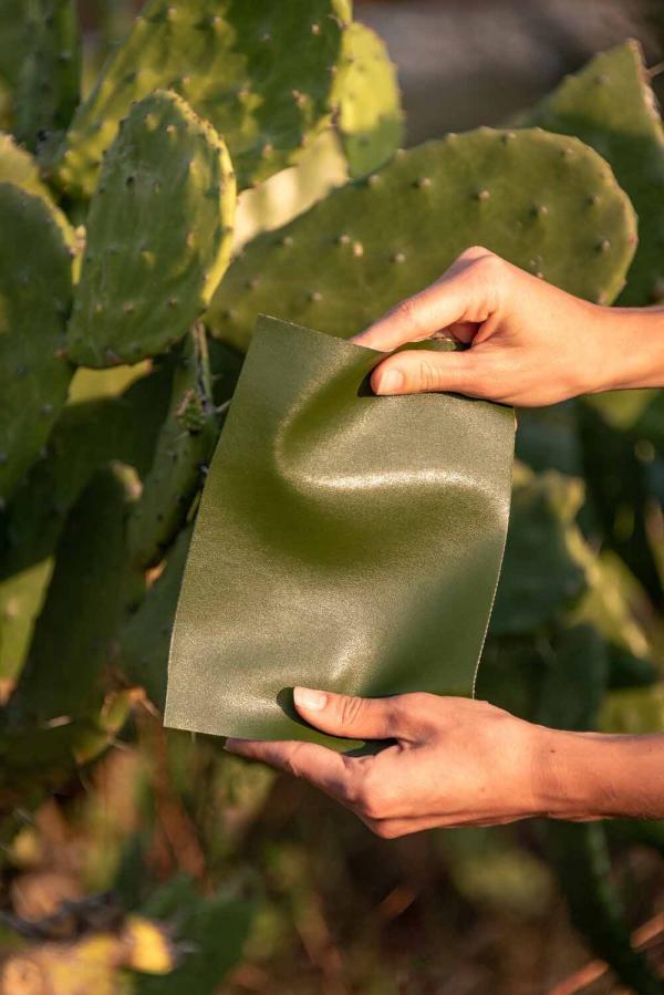 cuir artificiel de cactus sensation du cuir véritable