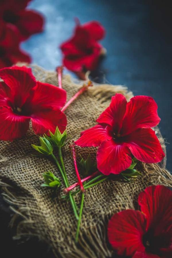 diy jus de bissap à partir de fleurs d'hibiscus