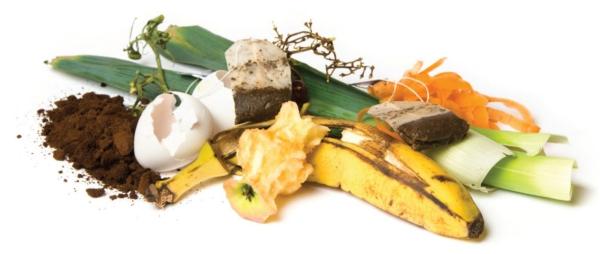 fertiliser un sol déchets organiques