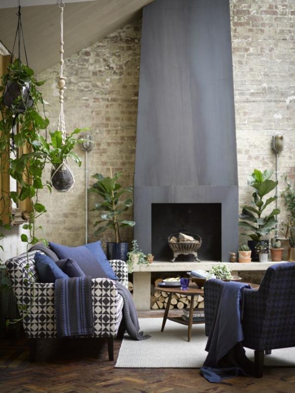 jardiland plante intérieur correspondre au plafond