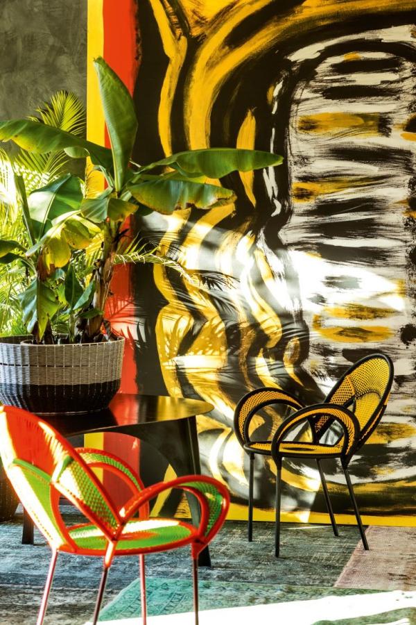 jardiland plante intérieur créer une ambiance tropicale