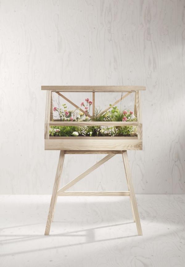 jardiland plante intérieur serre miniature