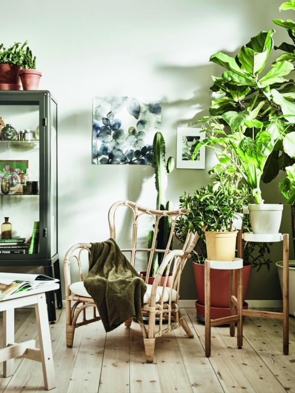 jardiland plante intérieur support de plantes à niveaux