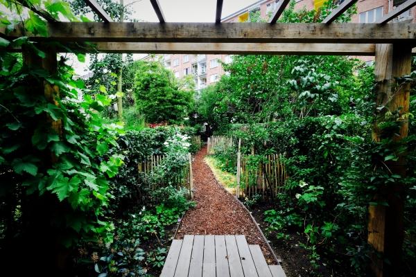 jardin écologique développer l'horticulture