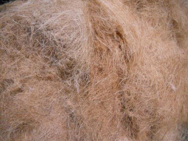 jardin écologique fibres de coco