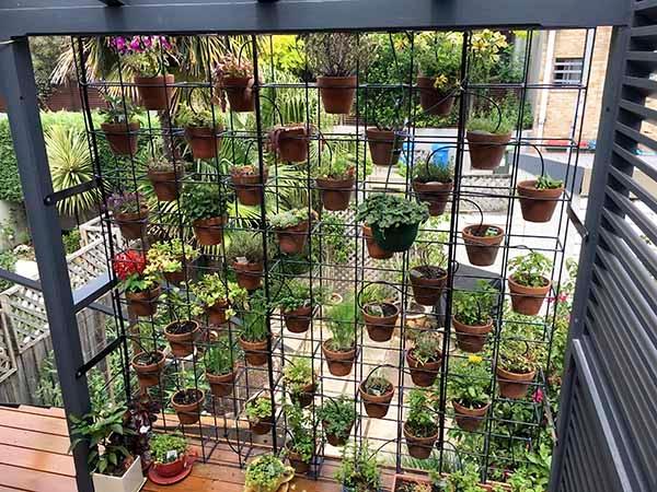 jardin écologique quel terrain