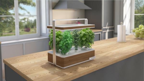 jardin écologique une installation confortable