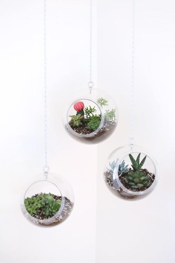 jardinière suspendue bricolage récipients pour terrariums