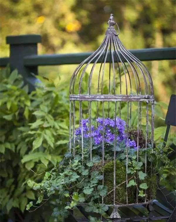 jardinière suspendue bricolage une vieille cage