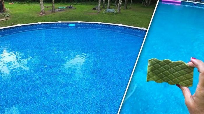 nettoyage fond de piscine développement de microorganismes