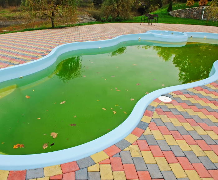 nettoyage fond de piscine eau moisie