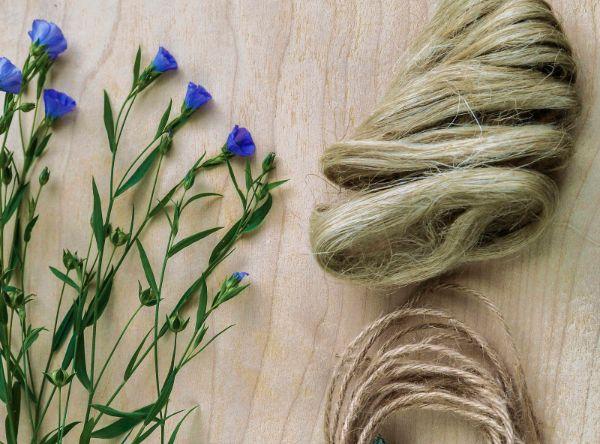 plante et fibres lin linge de lit en lin lavé