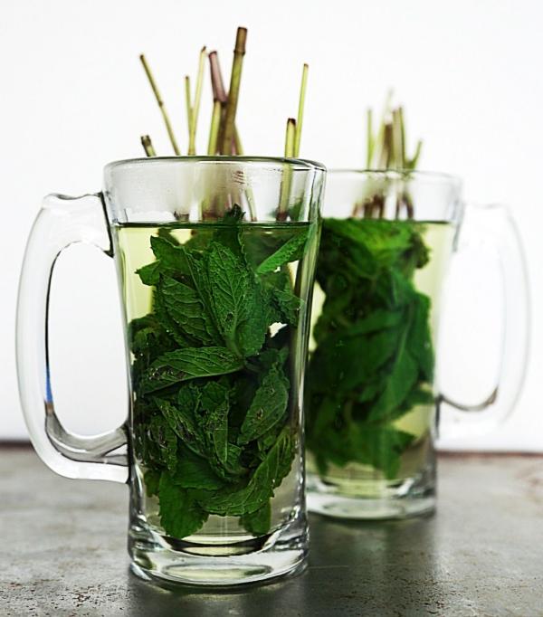 recette thé à la menthe feuilles fraîches