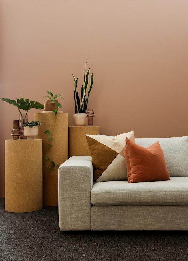 peinture couleur terracotta clair dans salon naturel et chaleureux